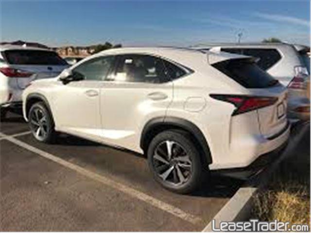 2018 Lexus NX 300 Rear
